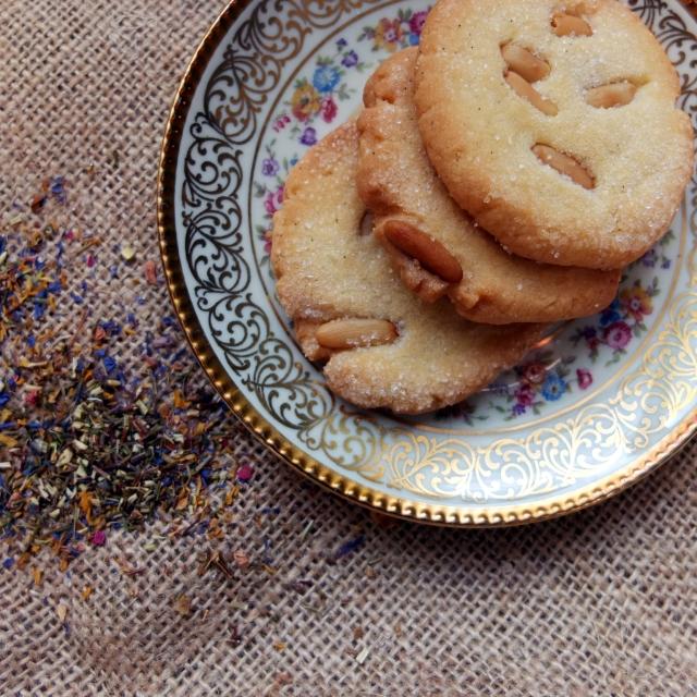 pinienkern biscotti_1